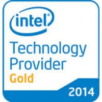 January 2014: Intel Technology Provider Gold Award